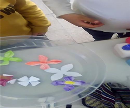 """EB Fundo de Vila -""""Flores flutuantes"""""""