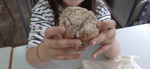 O Ciclo do Pão – um dia com um sabor diferente!